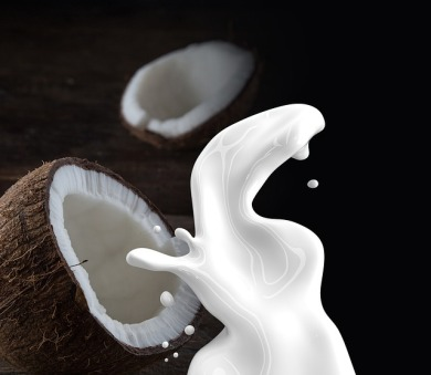 coconut-milk-1623611_640